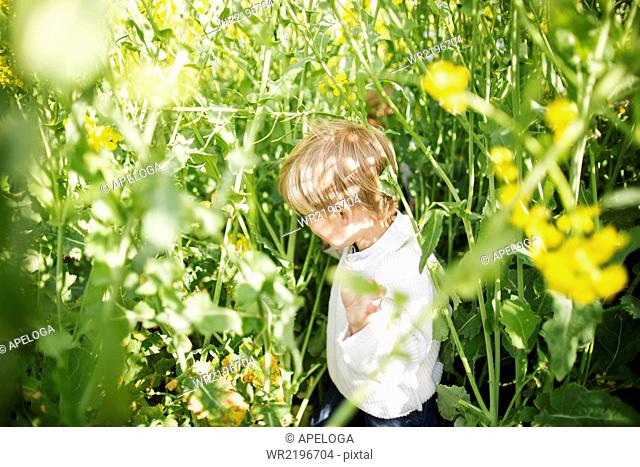 Side view of boy amidst plants at rapeseed field