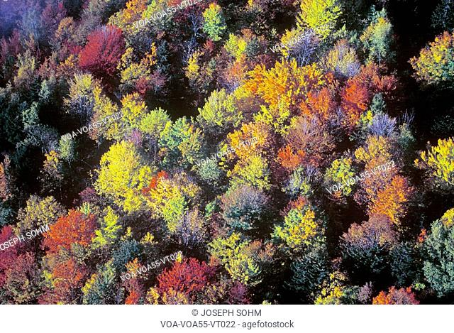 Aerial view of Autumn colors and trees in mountains of VT