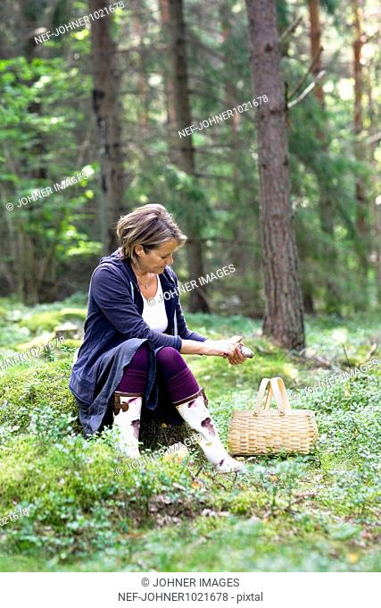 Woman collecting mushrooms