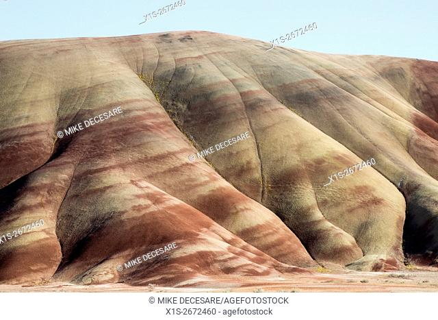 Colorful bands of volcanic ash and clay slope upward at the Painted Hills in East Central Oregon at an angle that is evidence of a violent geologic past