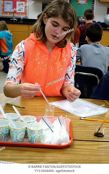 Student Studying Chemical Reaction to Liquids, Wellsville, New York, United States