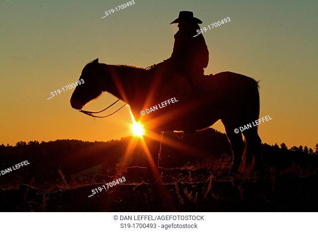 Cowboy on horse at sunrise