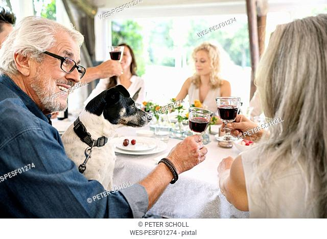 Senior couple clinking wine glasses on a family celebration