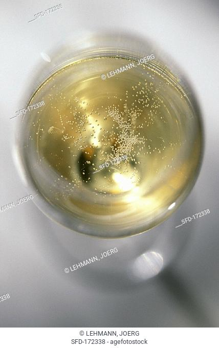 A glass of Dom Perignon Epernay (from above, 1)
