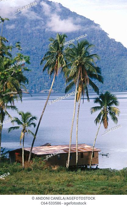 Lake Toba. Sumatra. Indonesia