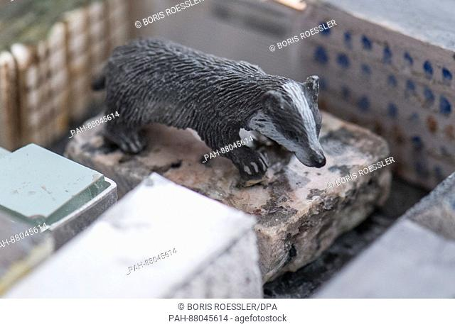 A badger (German: Dachs) symbolizes the Frankfurt Stock Exchange in the new model of the city of Frankfurt, Germany, 13 February 2017