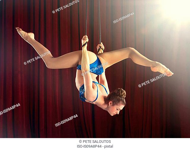 Female aerialist performing splits on ropes