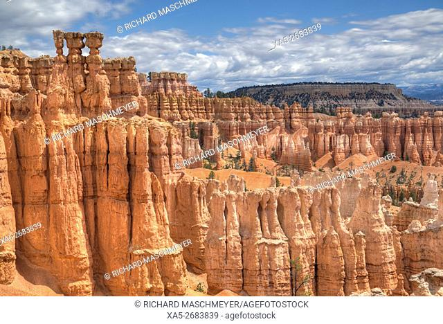 Hoodoos on the Queens Garden Trail, Bryce Canyon National Park, Utah, USA