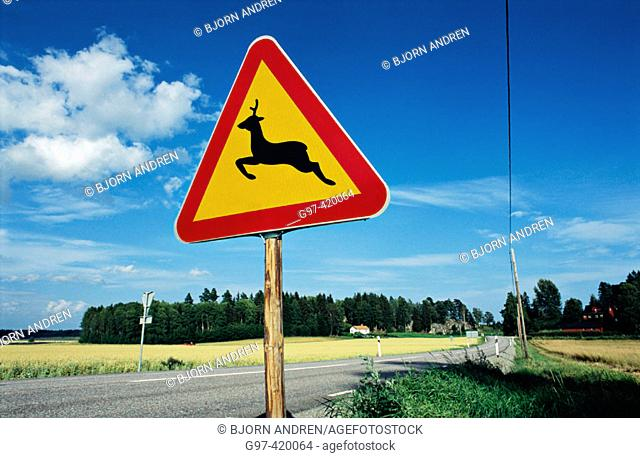 Deer crossing sign. Sweden