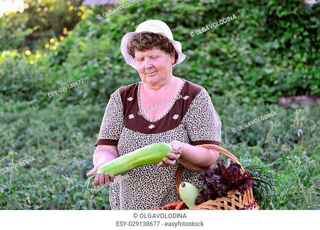A Woman reaps a crop of zucchini