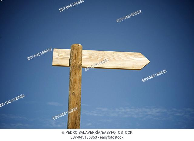 View of a directional wood signal