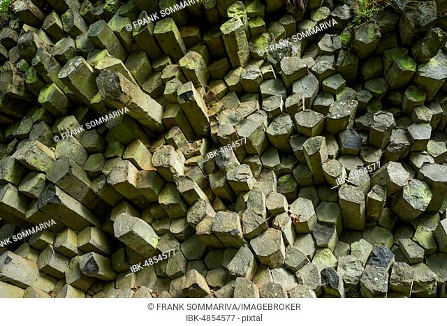 Basalt prisms, Gangolfsberg, Rhön Biosphere Reserve, Bavaria, Germany