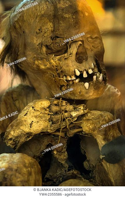 Mummy of a young man, Chancy, Peru, 16th century, Carmo Convent and church, Lisbon, Portugal