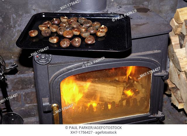 Roasting Chestnuts on a Wood Burning Stove, in a house in Wales, UK