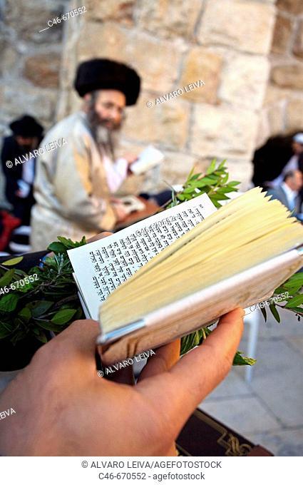 Orthodox Jews praying by the Wailing Wall 'Western Wall' , Jerusalem. Israel
