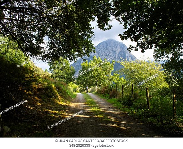 Parque natural de Urkiola. Vizcaya. Pais Vasco. España. Europa