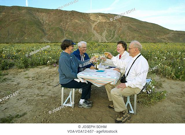 Four senior citizens drinking white wine in field of spring desert gold yellow flowers near Henderson Road in Anza-Borrego Desert State Park, CA