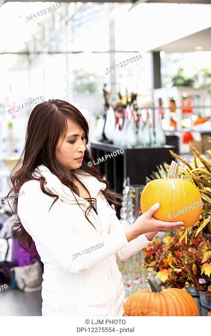 Woman looking at pumpkins in a greenhouse; St. Albert, Alberta, Canada