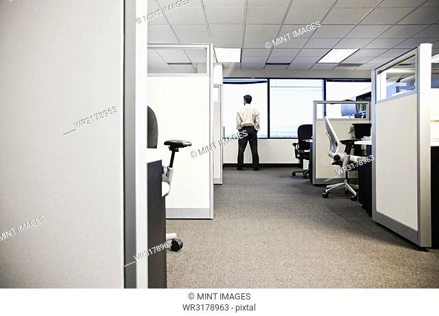 Cubicle office set up with business person at window in background
