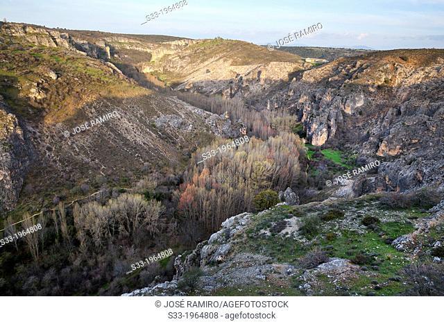 Dulce river gorge in Pelegrina. Guadalajara. Castilla la Mancha. Spain