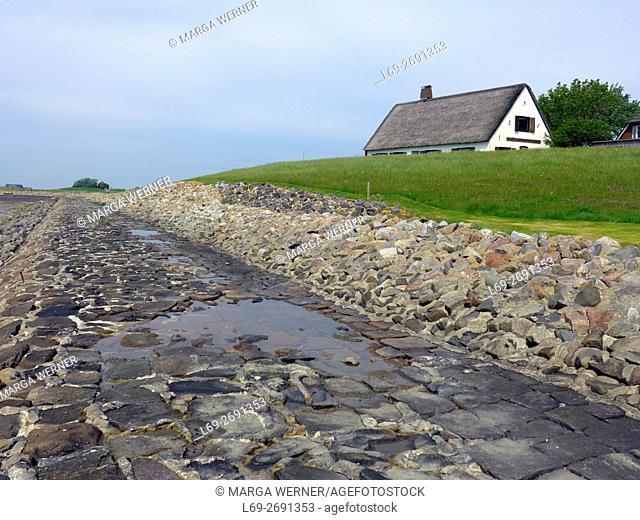 Historic house hidden on Neuwarft, Hallig Langeneß, Wadden Sea, North Sea, Schleswig-Holstein, Germany, Europe