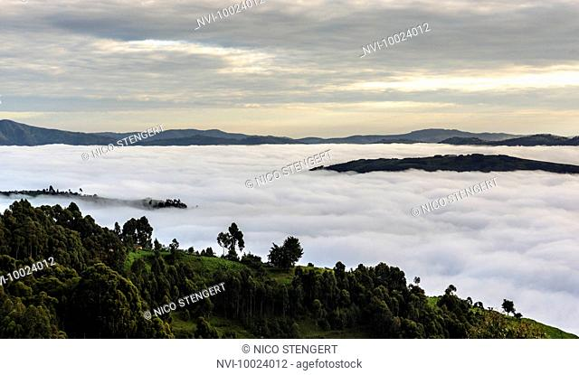 Morning fog in the mountains on Lake Bunyonyi, Kabale District, Uganda, Africa