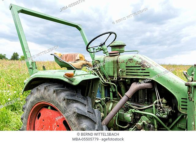 Michelstadt, Hessen, Germany, Fendt, Dieselross F 220 GT, year of manufacture 1959, 19 HP, cubic capacity 1810 cubic centimetres