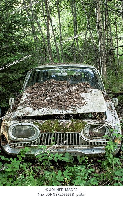 Old car abandoned in forest