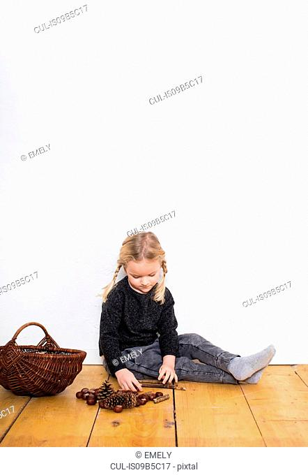 Young girl sitting on floor, sorting through pine cones and conkers