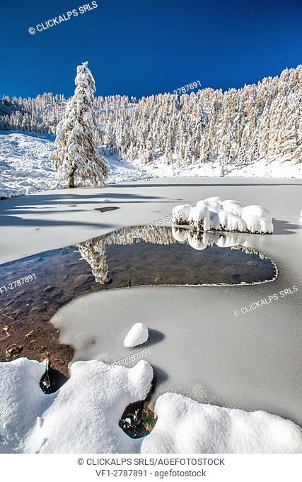 Autumnal snowfall at Lake Casera in the Livrio valley Orobian natural park, Alps, Valtellina, Sondrio, Lombardy, Italy Europe