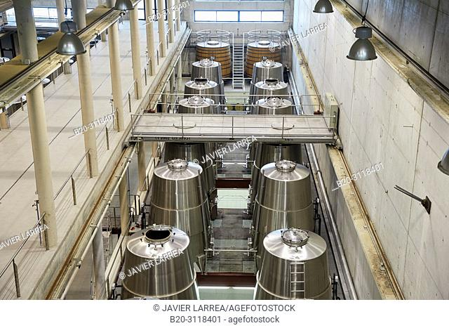 Fermentation tanks, Winery Building Architect Iñaki Aspiazu, Bodegas Baigorri, Samaniego, Rioja Alavesa, Araba, Basque Country, Spain, Europe