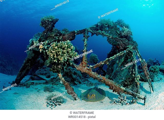 Wreckage of Cousteaus Precontinent 2, Calypso, city, Coustaus, Cousteau, Shaab Rumi, Red Sea, Sudan