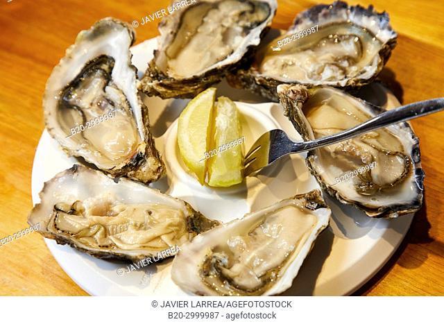 Oysters, Bar Restaurante Portaletas, Parte Vieja, Old Town, Donostia, San Sebastian, Gipuzkoa, Basque Country, Spain