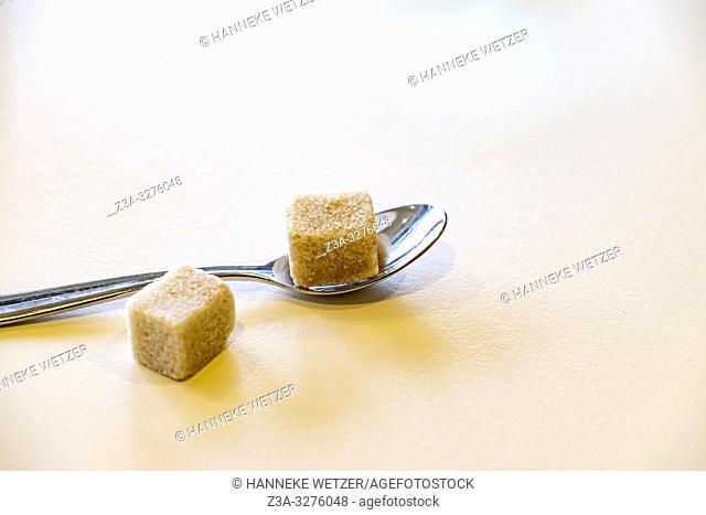 Cane sugar cubes and a spoon on a table