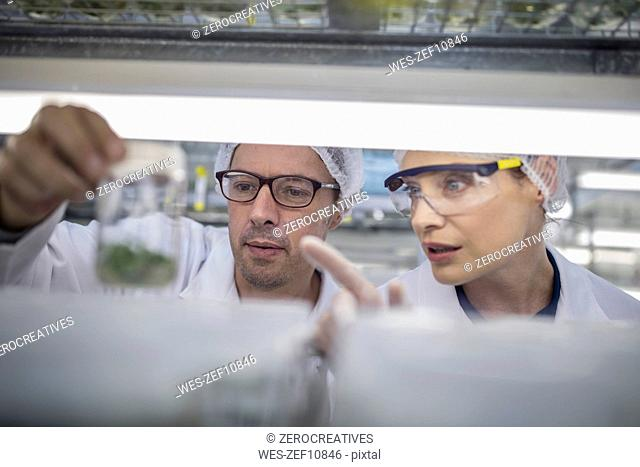 Scientists working in lab wearing protective clothing looking at sample
