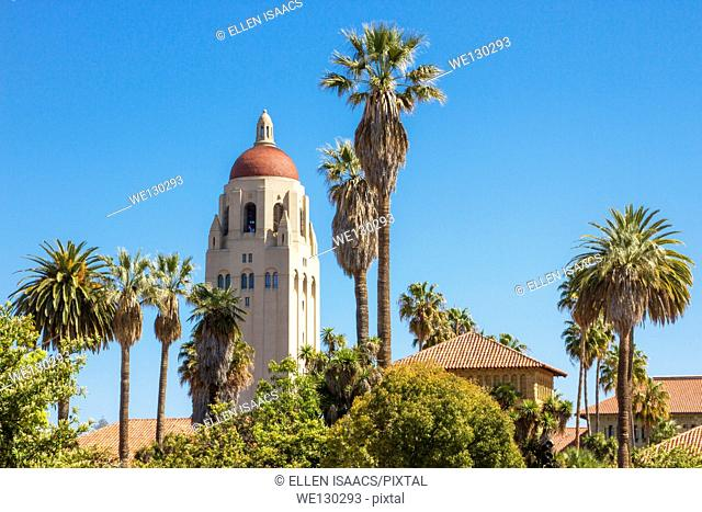 Hoover Tower among palm trees and red rooftops on Stanford University campus