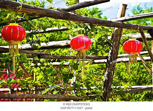 Chinese lanterns hanging on a wooden post, Hohhot, Inner Mongolia, China