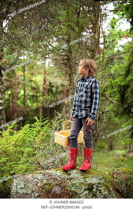 Boy holding basket in forest and looking away