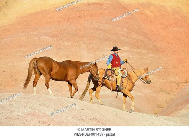 USA, Wyoming, cowboy with two horses in badlands