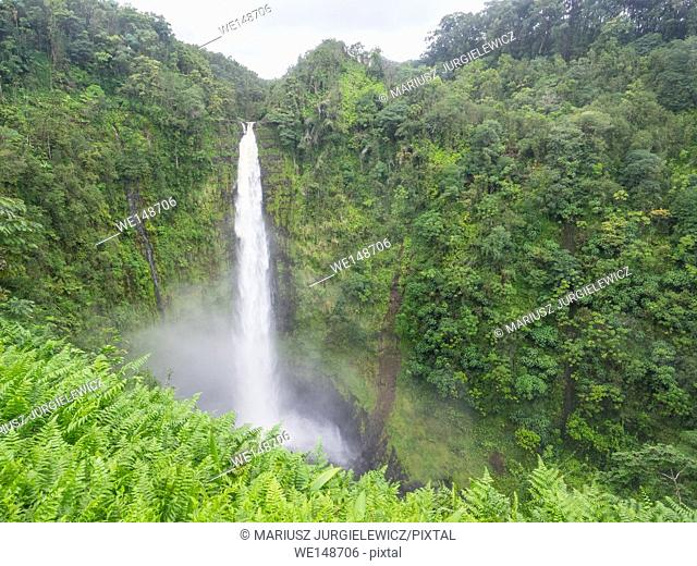 Akaka Falls State Park is a state park on Hawaii Island