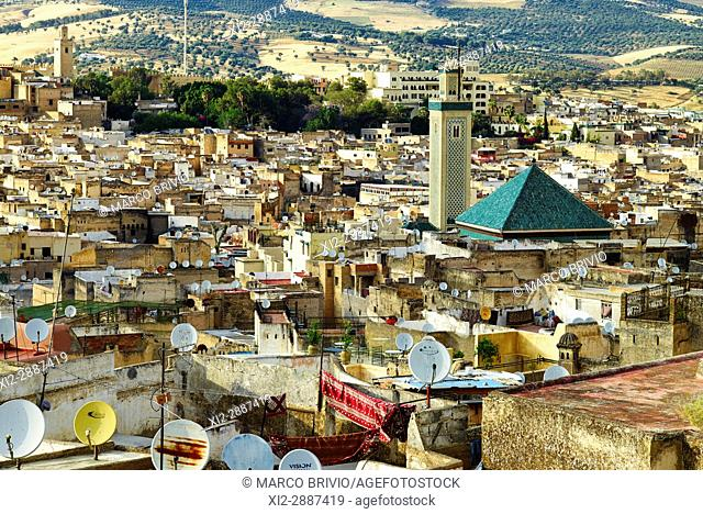 Elevated view of Fez, old city, Morocco