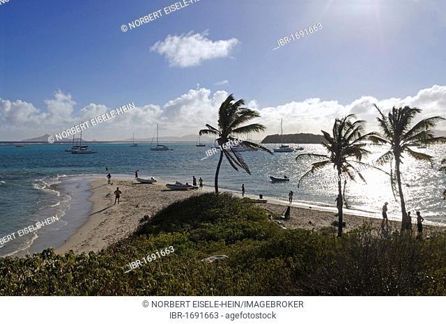 Island, Tobago Cays, Saint Vincent, Caribbean