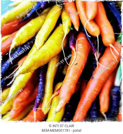 Close up of variety of fresh carrots
