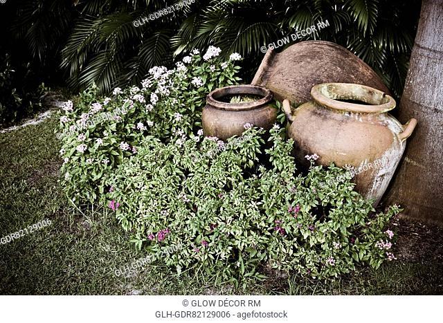 Pots in a lawn