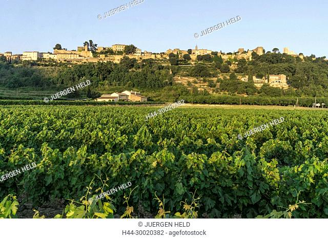 France, Alpes-de-Haute-Provence, Luberon, vineyard near Menerbes, labelled Les Plus Beaux Villages de France, The Most Beautiful Villages of France, France