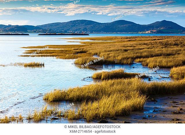 Santoña, Victoria and Joyel Marshes Natural Park. Colindres, Cantabria, Spain