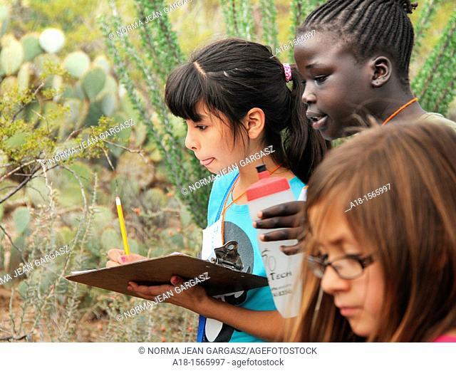 Elementary school students study the Sonoran Desert in Tucson, Arizona, USA