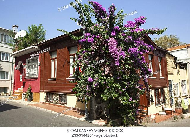 Traditional wooden house covered withy bougainvilleas in Heybeliada-Halki, Prince Islands, Marmara Sea, Istanbul, Turkey, Europe