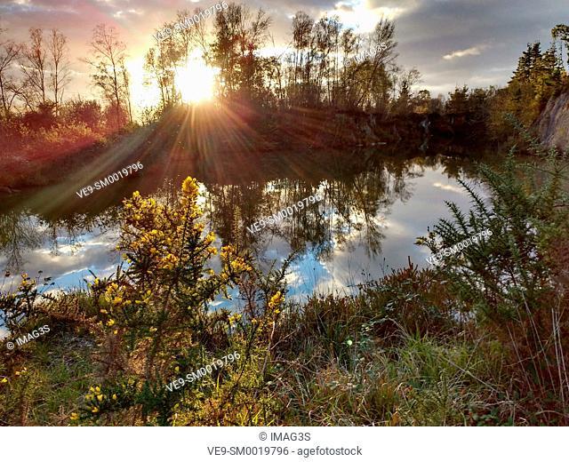 L'Enguilu pond near Viobes village, Nava municipality, Asturias, Spain