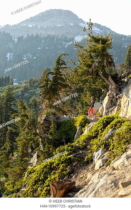 USA, California, Lassen Volcanic, National Park, woman hiking in the park